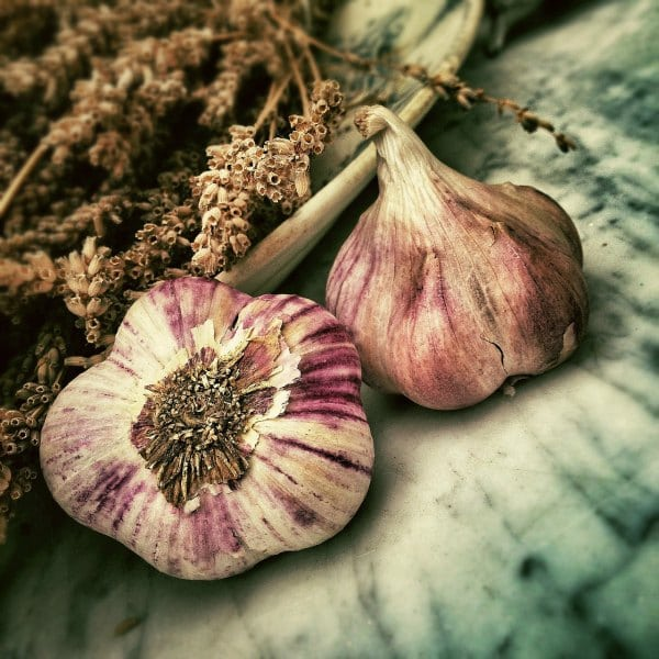 Garlic for the common cold – 2009