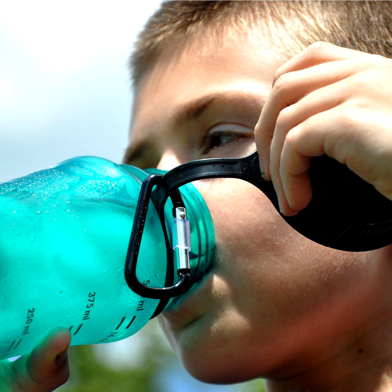 BPA's & the Endocrine System